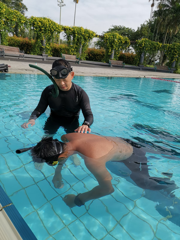 SSI Freediving Instructor Training Course (FITC) Pool in
